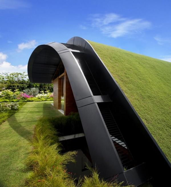 Uma casa com jardim no telhado 5